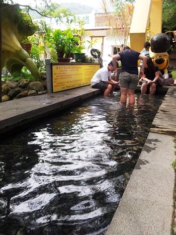 宏基蜜蜂生態農場 (2).jpg