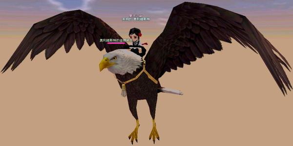 鷹每次看都很帥