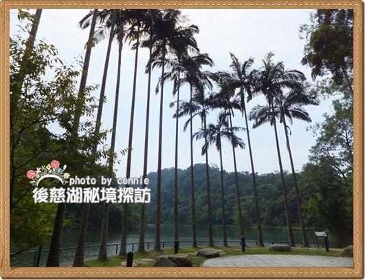 20110910慈湖-10.JPG