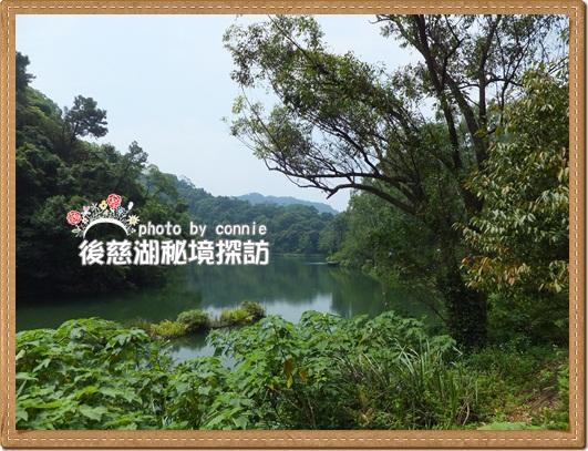 20110910慈湖-12.JPG