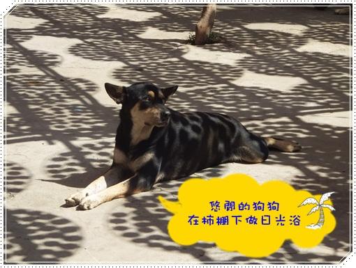 20111023-味衛佳8.JPG