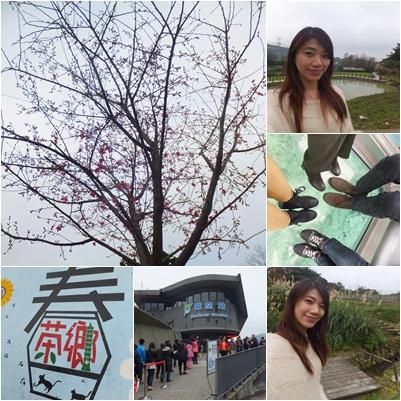 2012128坐貓纜放空-2.jpg