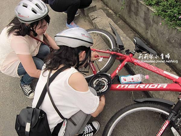 小金門單車