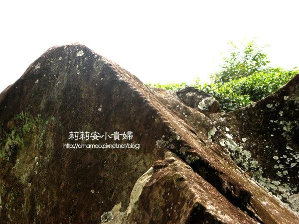 阿里山鄒族福山古道