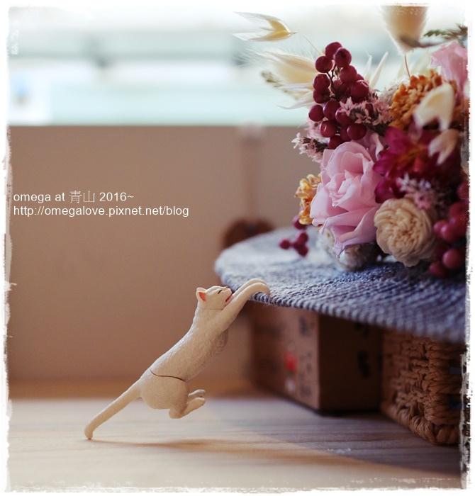 0701《食*台北大同區》赤峰街的日式風情~青山咖啡店%26;陽光灑落乾燥花帽飾DIY