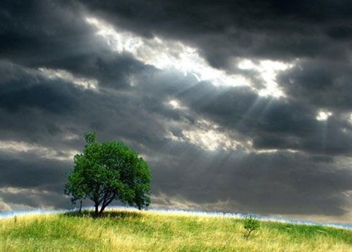 風雨中堅強.jpg