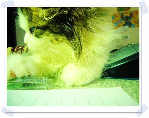 找筆筆幫媽咪作筆記