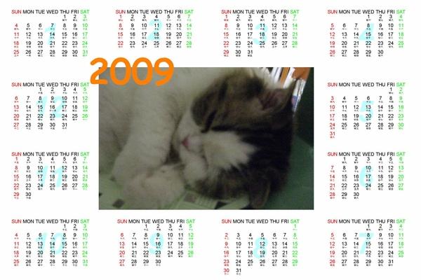 嚕咪2009年桌曆