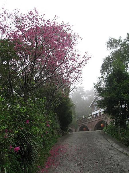 霧中的福田像仙境