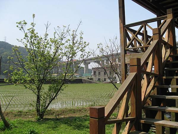 火車與稻田