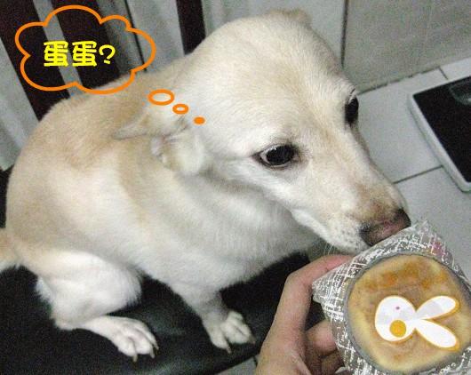 食11.jpg