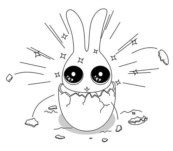 兔儸紀世界03.jpg