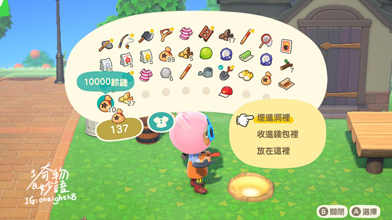 Animal Crossing05.jpg