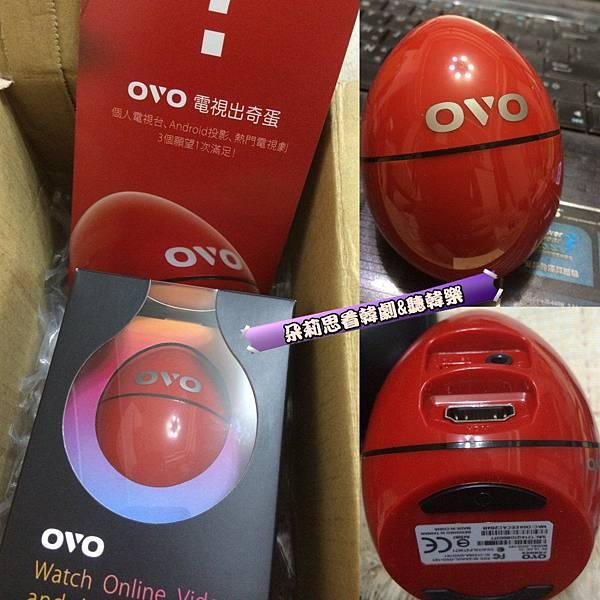 OVO-Q.jpg