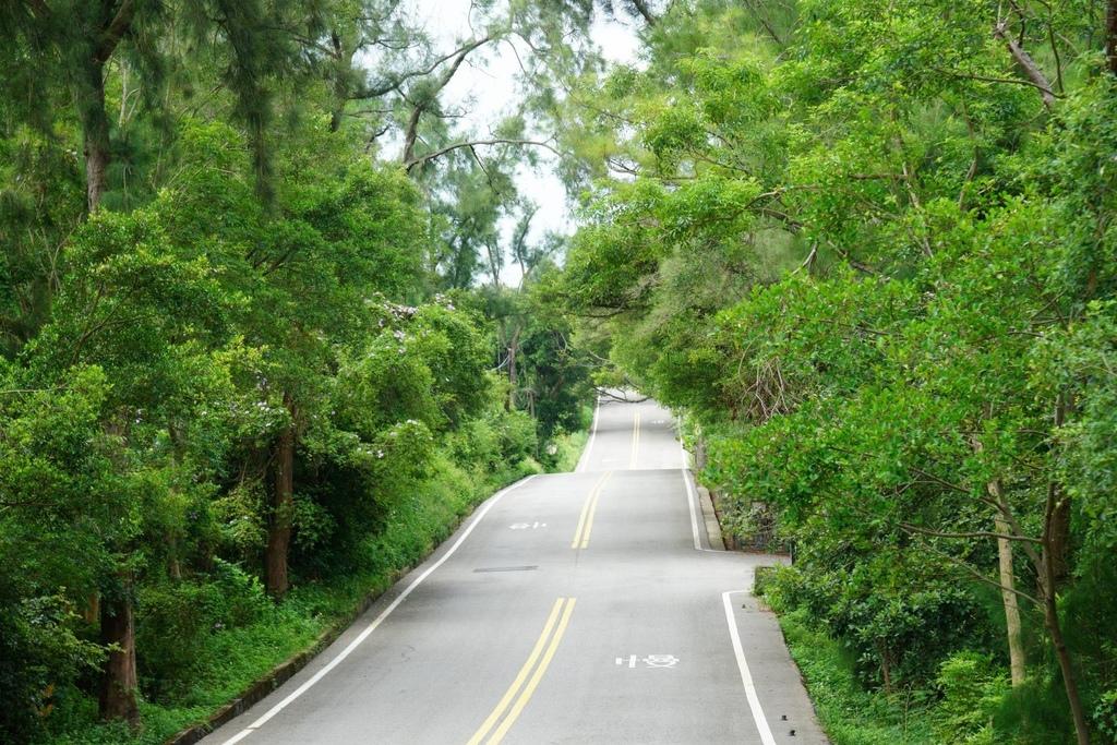 在這種幽靜的小路騎著車,很容易就不小心被奇特的景色所吸引住