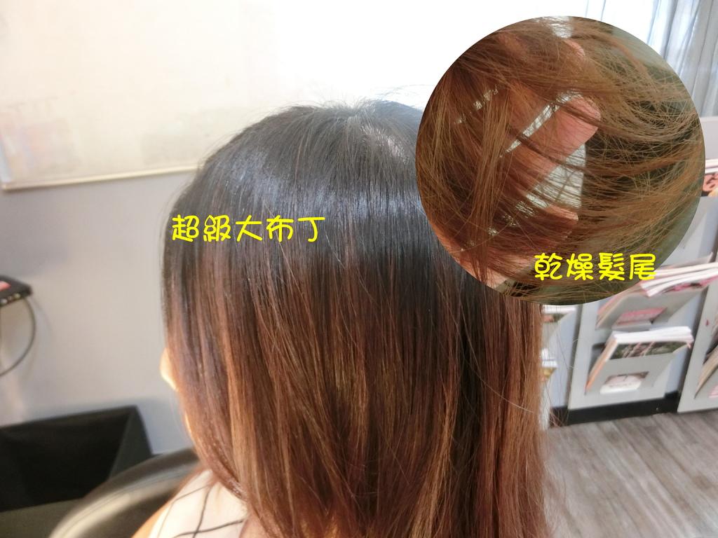 乾燥頭髮.jpg