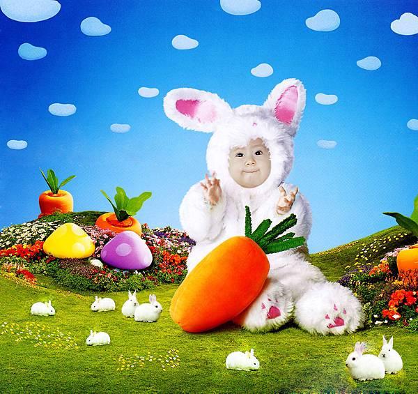 兔寶寶掃描 拷貝