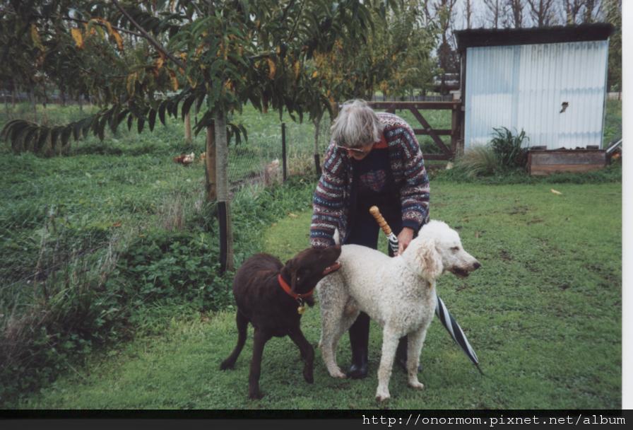 6Onor & guide dog Simon.jpg