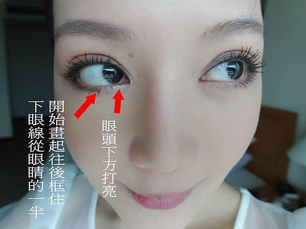 SAM_9033_conew3.jpg