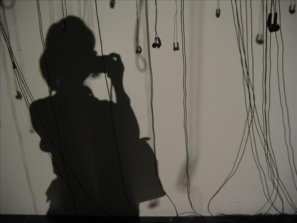 shadow_y_p