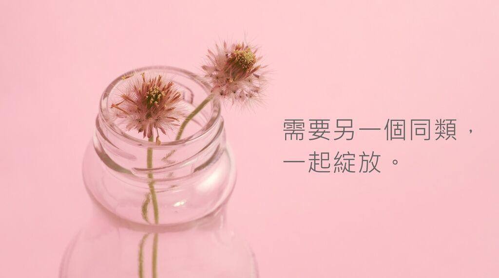 bottle_細字