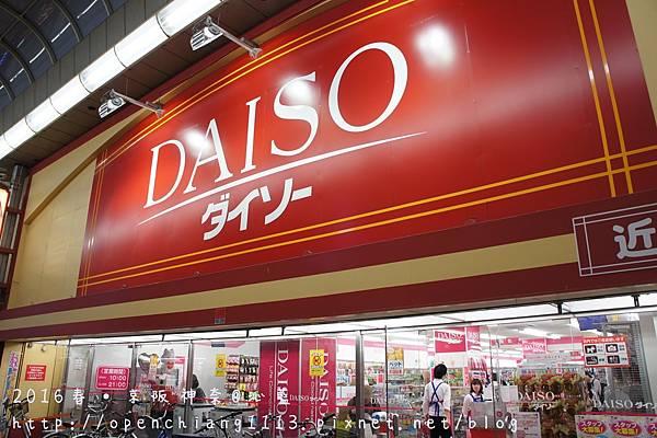 DSC08987