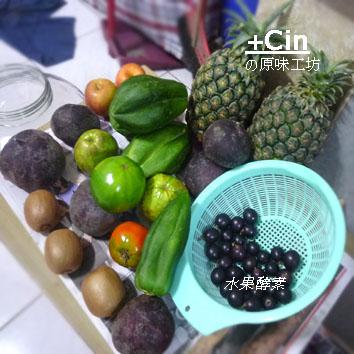 100-其他水果酵素2011.07.31