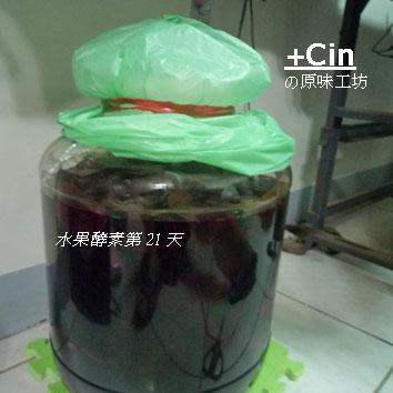 100-其他水果酵素2011.08.21