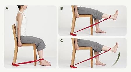 膝蓋伸展運動