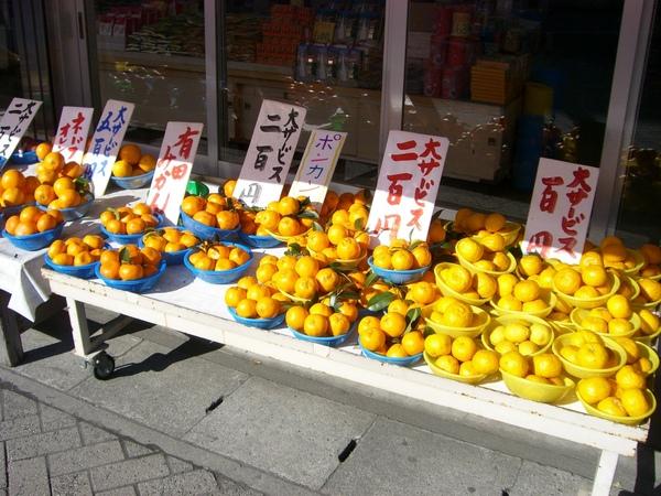 紀州盛產橘子