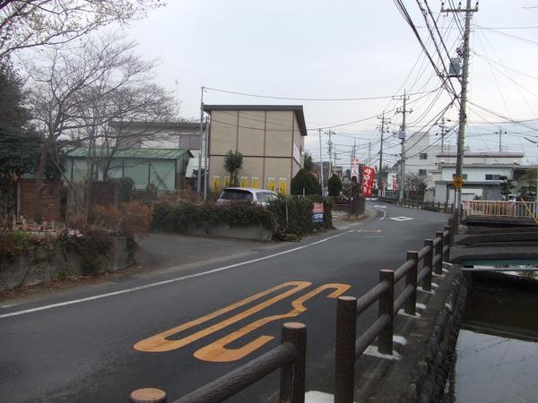 20100121 010.JPG