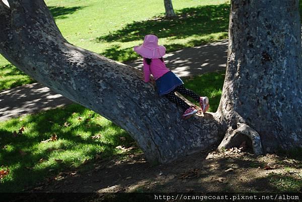 Irvine Regional Park 089.JPG