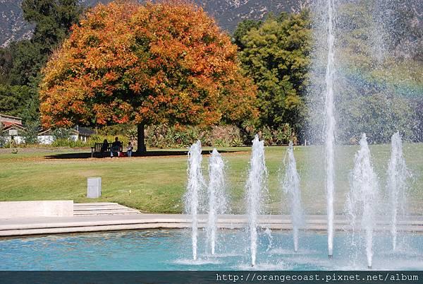 LA Arboretum 084.JPG