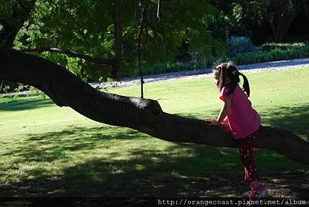 LA Arboretum 106.JPG
