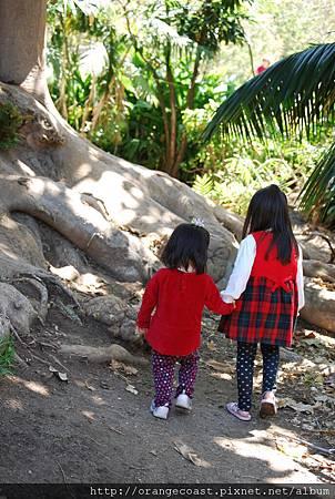 Fullerton Arboretum 123