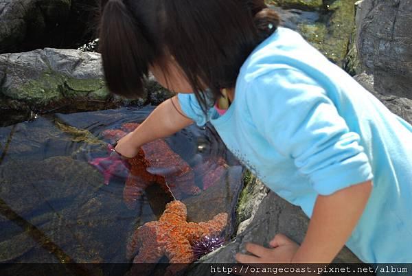 Cabrillo Marine Aquarium 015