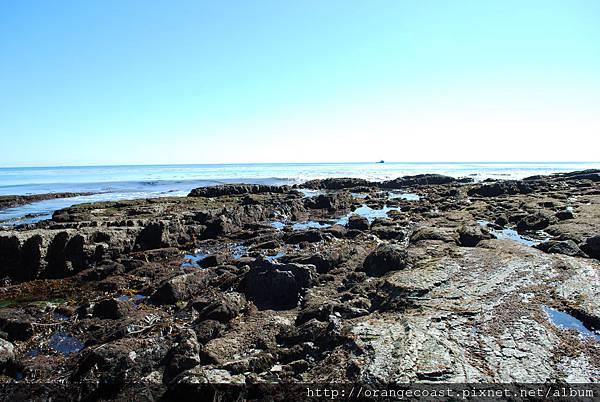 Cabrillo Marine Aquarium 028