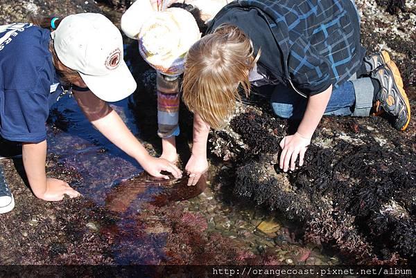 Cabrillo Marine Aquarium 048