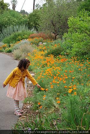 LA Arboretum 179