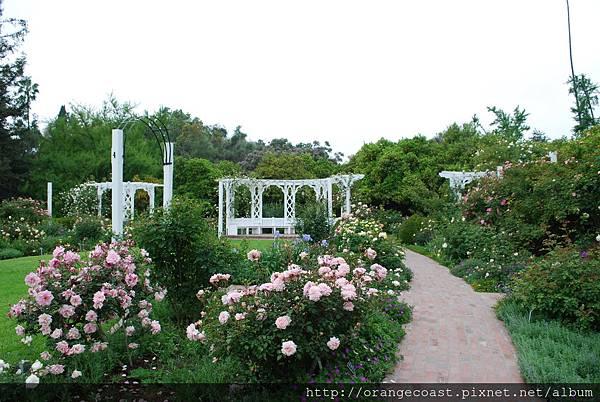 LA Arboretum 146