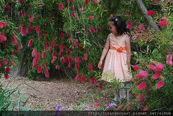 LA Arboretum 277