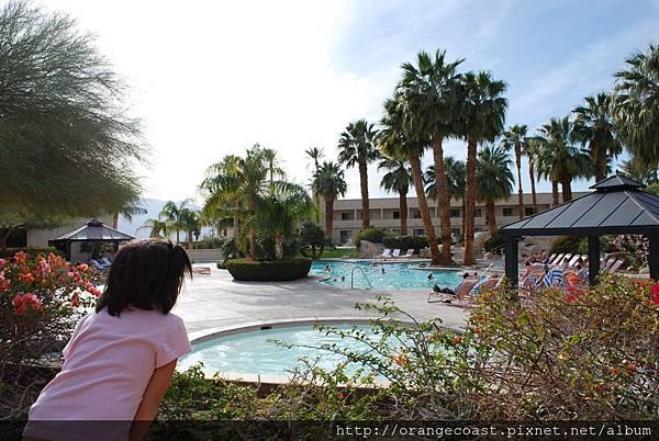 Palm Springs 649