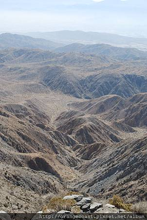 Palm Springs 375
