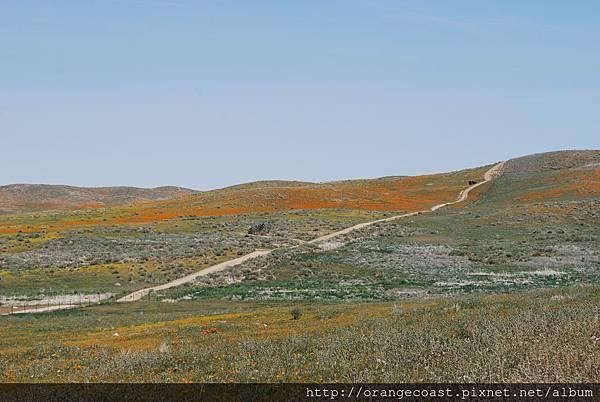 Antelope Valley 2014-04-20 169