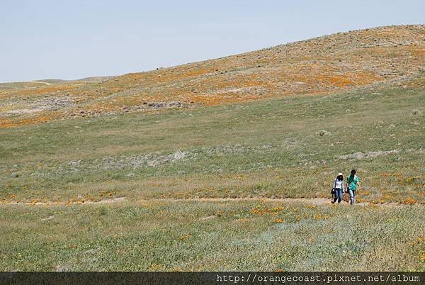 Antelope Valley 2014-04-20 133