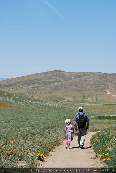 Antelope Valley 2014-04-20 143