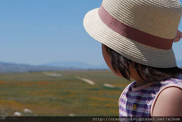 Antelope Valley 2014-04-20 171