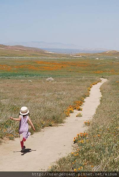 Antelope Valley 2014-04-20 217