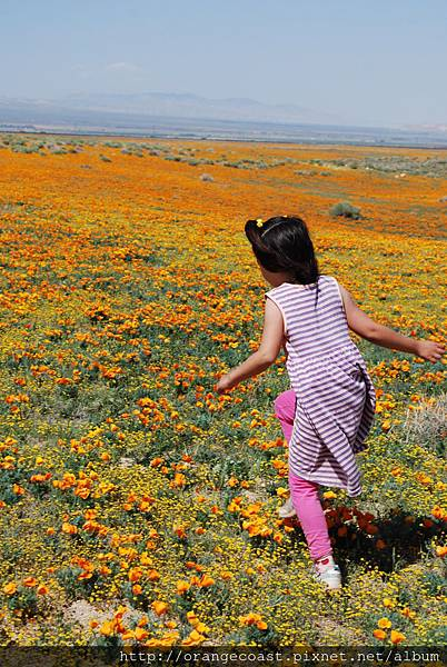 Antelope Valley 2014-04-20 413