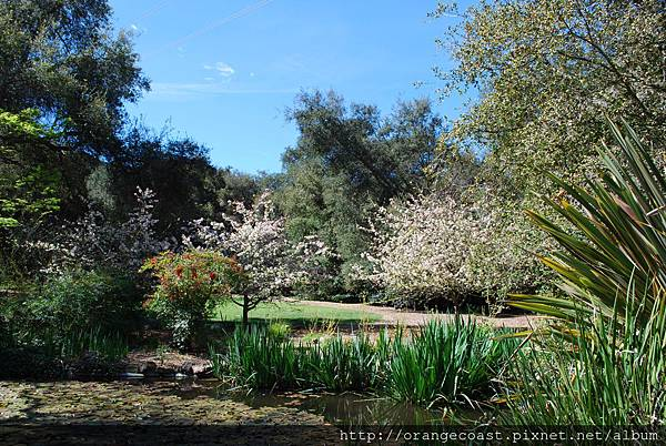 Descanso Gardens 091